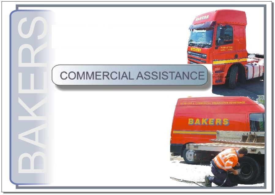 Commercial Assistance